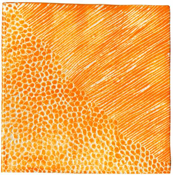 Handgemachte Fliese sgrafitto orange von Guido Kratz aus Hannover